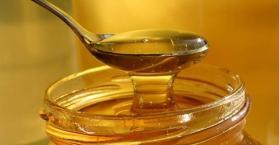 أوكرانيا الأولى أوروبيا والثالثة عالميا في إنتاج وتصدير العسل