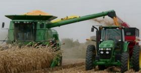 مصر تعلن شطب أوكرانيا من قائمة موردي القمح إليها