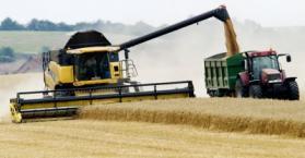 أوكرانيا تحظر تصدير القمح بدءا من منتصف شهر نوفمبر المقبل