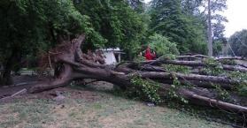 العواصف والأمطار تقتل شخصا وتصيب أربعة آخرين في أوكرانيا