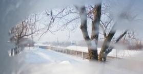 ارتفاع عدد ضحايا موجة البرد القارس إلى 37 في أوكرانيا