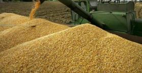 أوكرانيا صدرت 14 مليون طن من الحبوب منذ بداية الموسم الحالي